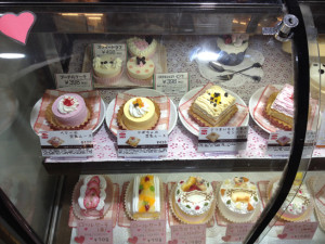 ペットショップで売っている犬用の食事やケーキ3
