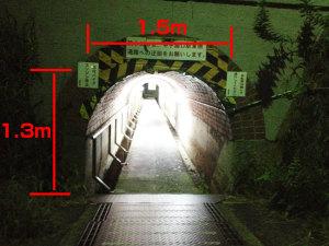 マンボウトンネルの中