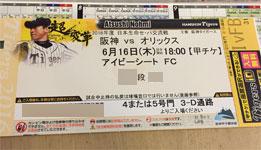 6/16阪神vsオリックスのチケット