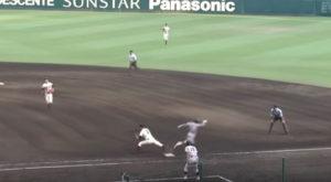 大阪桐蔭vs仙台育英1
