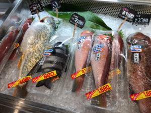 刺身用の魚